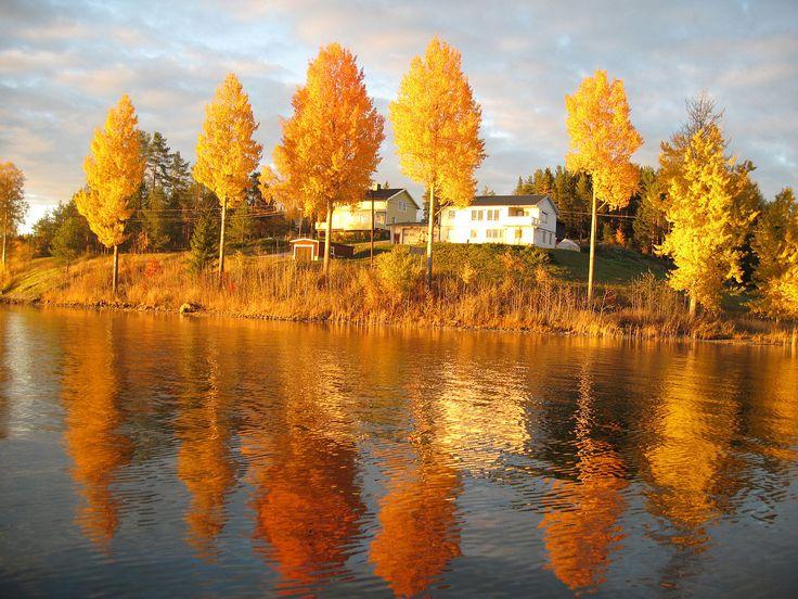 File:Billsjösjön.jpg