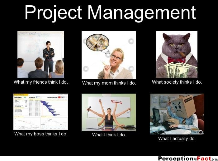 Project management what people think i do what i for Do my project