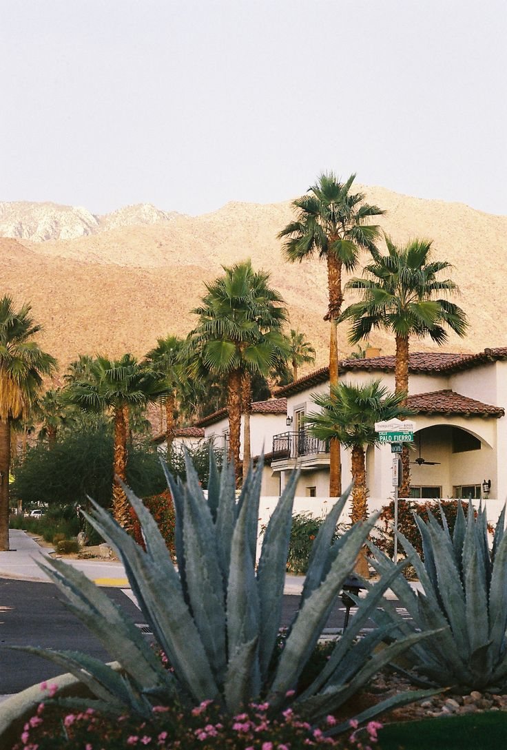 Palm Springs, here we come! X