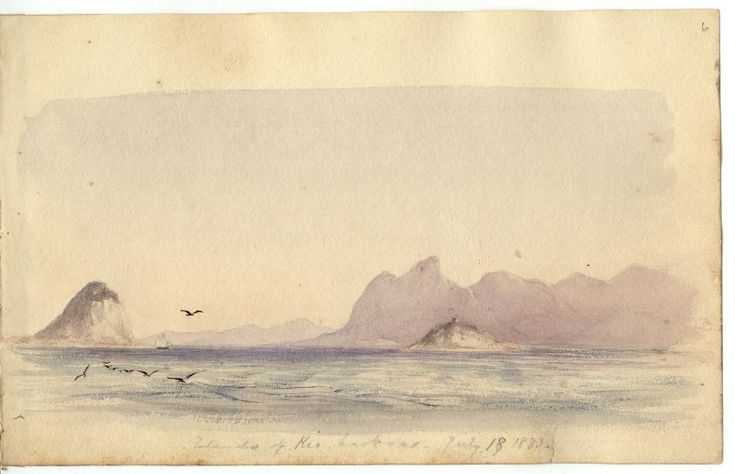 Page from Conrad Martens' Sketchbooks (1833-1835) (courtesy Cambridge University Library)