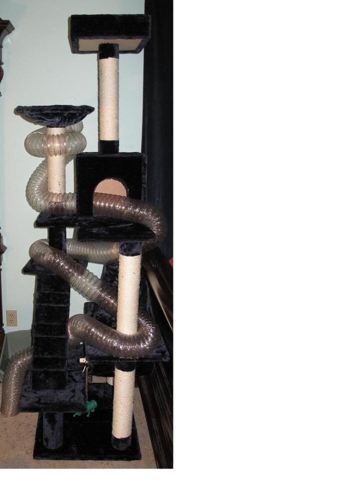 Cool ferret toy- tower of fun! | The Holistic Ferret Forum