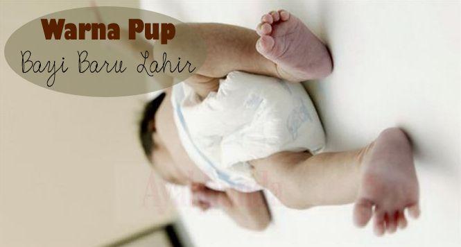 Pernahkan Anda mengamati pup bayi? Ternyata dari warna dan kondisinya bisa mengungkapkan kesehatan bayi. Klik link di atas untuk informasi selengkapnya