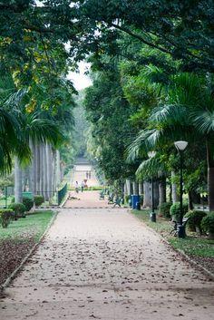 Botanic Garden, Bangalore, India