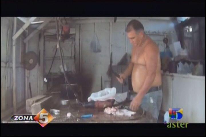 Desmantelan Criadero De Animales Donde Vendian Carne De Caballo #Video