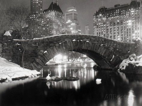 New York Pond in Winter Poster - at AllPosters.com.au