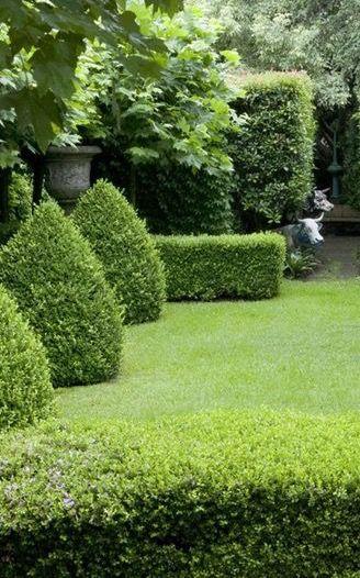 Well Manicured Garden