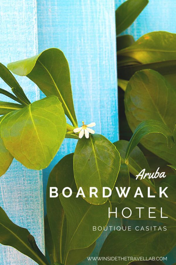 The gorgeous boutique Boardwalk Small Hotel Aruba from @insidetravellab