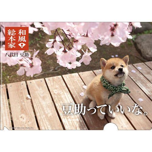豆助 / 八代目豆助クリアファイル【クリアファイル】