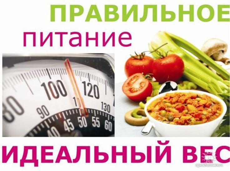 какие овощи надо есть чтобы похудеть