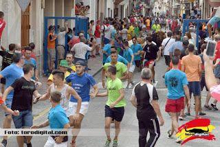 torodigital: 2º Encierro y prueba de vaquillas en La Vilavella...