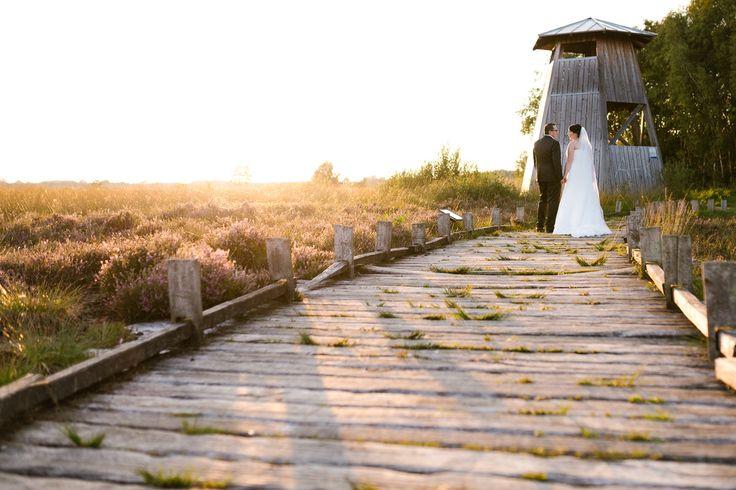 After Wedding Shooting im Großen Torfmoor in Minden-Lübbecke - Hochzeitsfotograf OWL - Hochzeitsfotograf Maik Molkentin-Grote