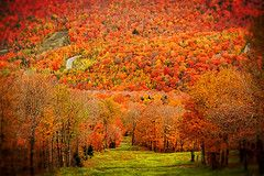 Purely Sutton Discover Mount Sutton, 30 minutes from Auberge Lac-Brome, a perfect escape during fall!