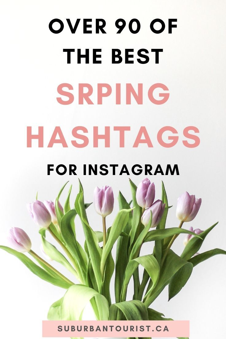 Over 32 Of The Top Spring Hashtags For Instagram 32 ...