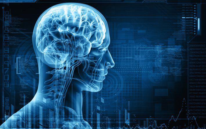 Télécharger fonds d'écran 3d, humain, X-ray, le squelette, les Neurones, le cerveau