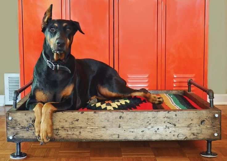 Industrial Dog Bed  •  Free tutorial with pictures on how to make a pet bed in under 120 minutes