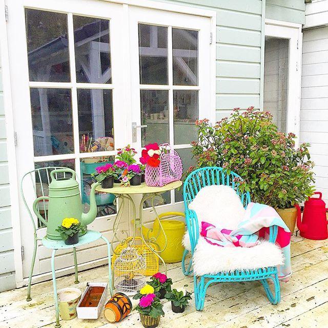 It's too early.  But I really need pink flowers in the garden!  (Ik weet het, het is veel te vroeg. Straks vriezen ze kapot. Maar deze vrolijke bloemetjes reizen nu al een week in de achterbak van mijn auto door Nederland. Dat helpt ook niet echt! Vandaag werden ook nog eens deze zomerse tasjes bezorgd. Dank @hipgemaaktnl @sunjellies  Dus in de potten met die plantjes! Oh, lente kom snel!!!) #myhome #garden #flowers #pink #sunjellies #vintage #ilovemygarden #tussendebuiendoor