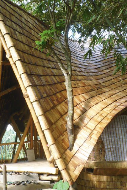 The 25 best bamboo roof ideas on pinterest bamboo for Bamboo roofing materials