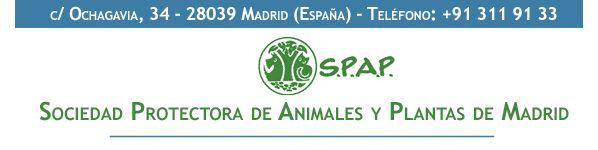 S.P.A.P.  Sociedad Protectora de Animales y Plantas de Madrid.c/ Ochagavia, 34 - 28039 Madrid (España) - Teléfono: +34 807 11 70 21