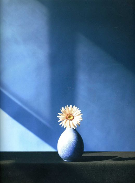 Robert Mapplethorpe - Flowers