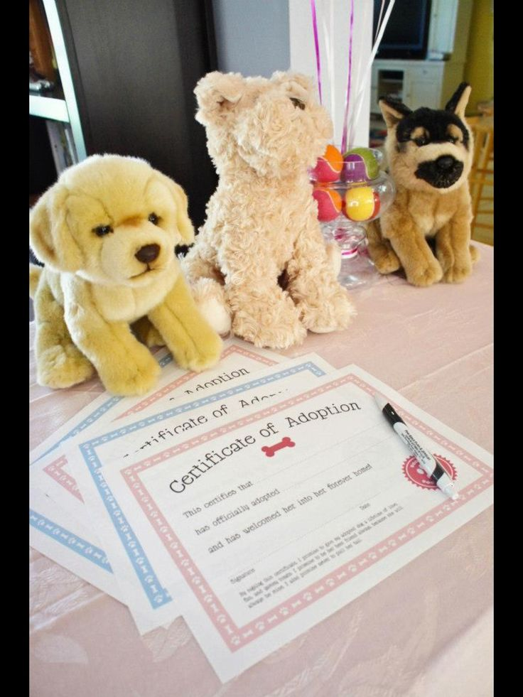 Toys R Us Birthday Party : Adopt a puppy for st birthday party dog theme dogs from