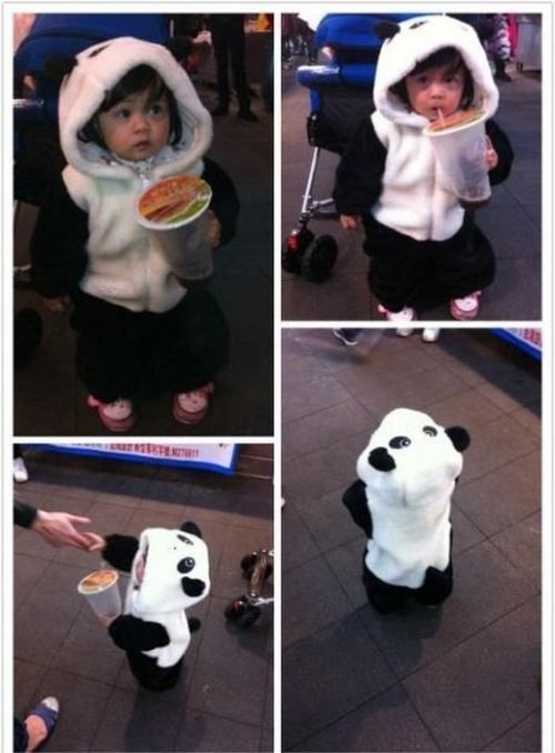 I would love to see a little one of these walking around!: Halloween Costume, Pandas Baby, Baby Pandas, Stuff, Children, Future Kids, Things, Panda Babies, Pandas Costume