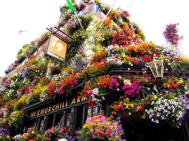 Because even if you go for a drink inside, the pubs can look like this on the outside. | 35 Reasons London In The Summer Ruins You For Life