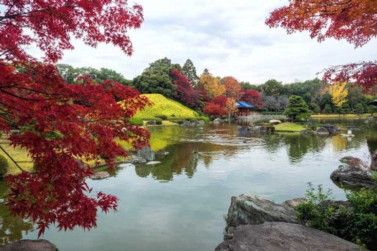Discover the beauty of Japan in autumn