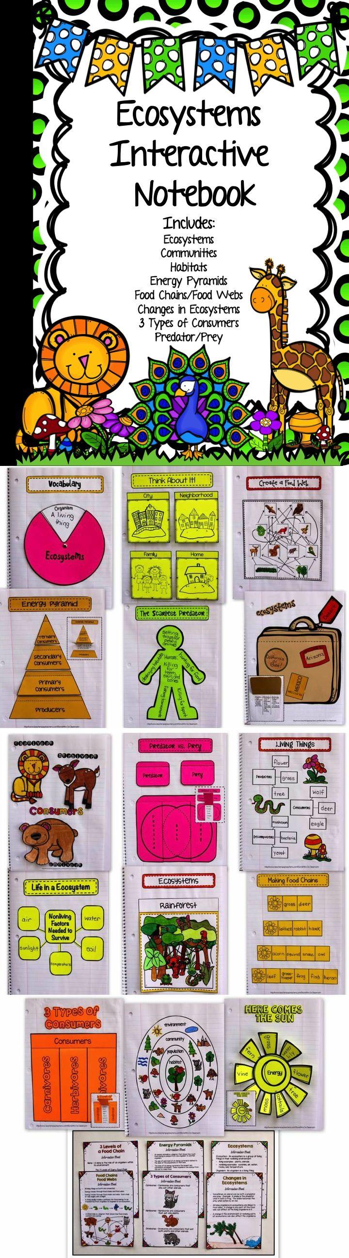 lab 6 population types essay Ap biology 2004-2005 essay 2000 ap biology 2004-2005 lab 6: molecular biology ap biology 2004-2005 lab 8: population genetics.