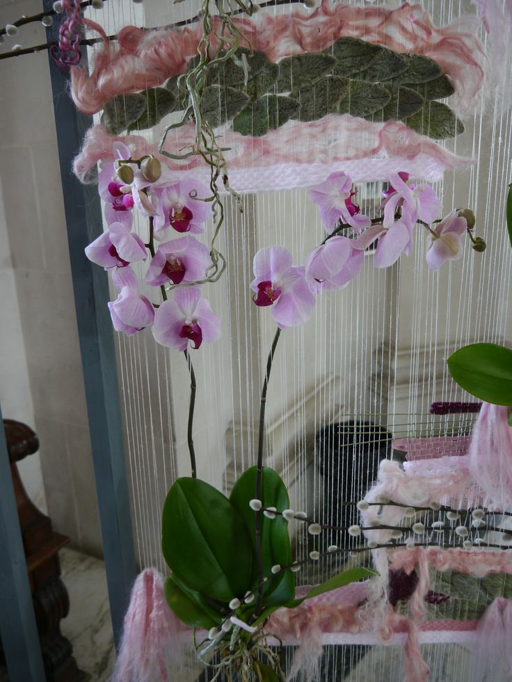 Orchids on the Loom