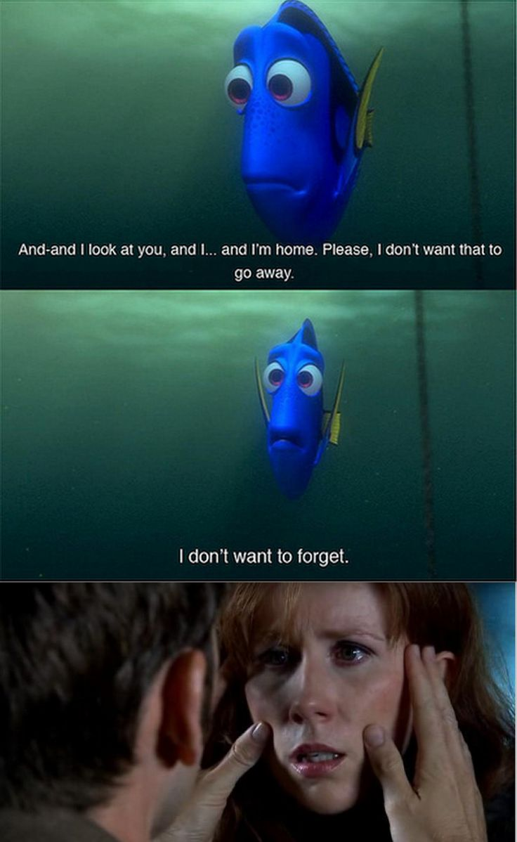 best images about doctor who dr who weeping 17 best images about doctor who dr who weeping angels and doctor who funny