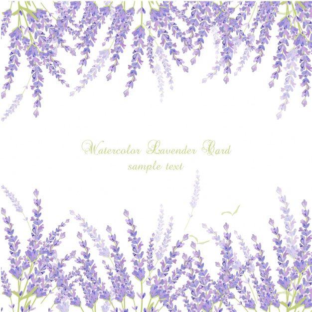Watercolor lavender card Free Vector