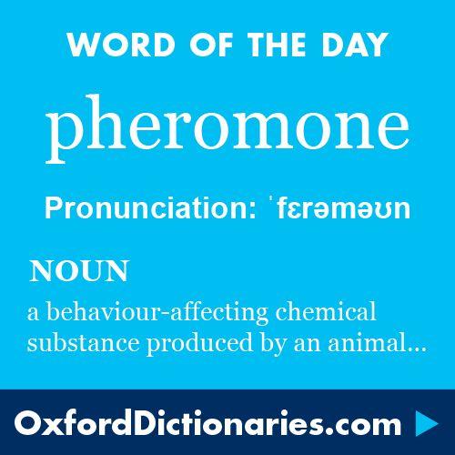 117: Pheromones