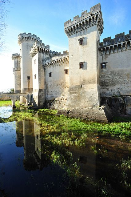 Tarascon, Provence, Francia del Sud, dicembre 2012 787 by tango-, via Flickr
