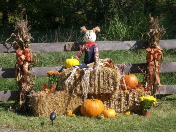 outdoor fall decorations autumn halloween hi everyone i just thought i would share my outdoor fall decor our home has a gated entrance and this is - Fall Yard Decorating Ideas