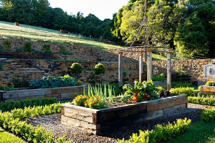 Backyard Terraced Vegetable Garden : vegetable garden on a steep site  Terraced Vegetable Garden