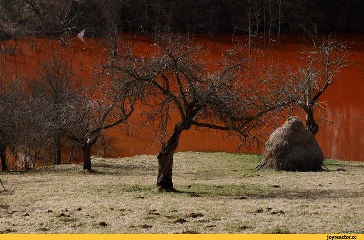 экология,молдавия,медь,постапокалипсис