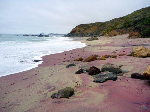 Purple Sand Beaches | Panoramio - Photo of Purple Sand Beach in Andrew Molera State Park