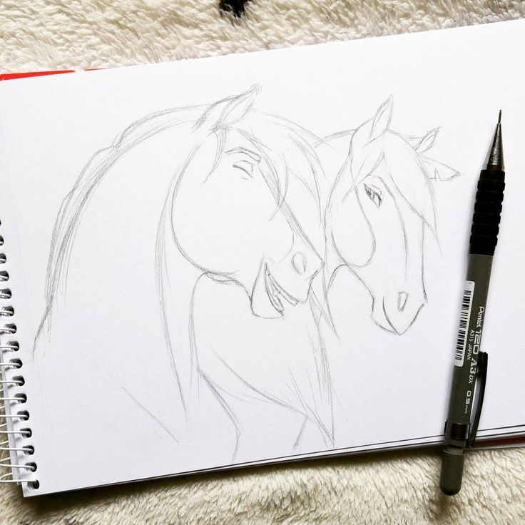 Best 25 horse drawings ideas on pinterest horse drawing spirit horse drawingsanimal drawingsdrawing ccuart Image collections