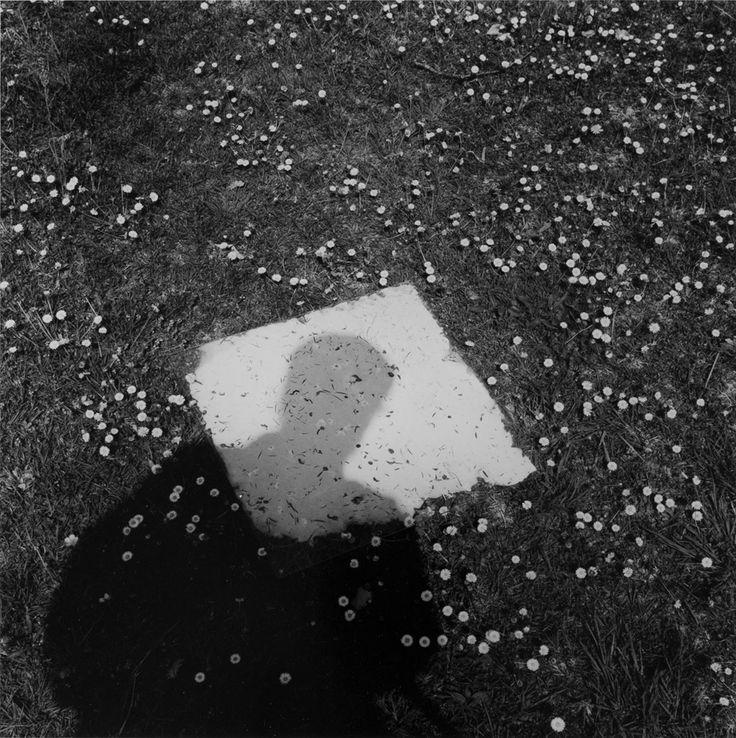 La galerie Robert Koch présente jusqu'au 2 juillet « Kenneth Josephson : The Light of Coincidence » (« Kenneth Josephson : Lumière de la Coïncidence »), qui concorde avec la sortie récente de sa dernière monographie du même titre. Josephson est depuis longtemps reconnu comme l'un des premiers et des plus influents praticiens américains de la photographie conceptuelle. L'exposition présente ses photos en noir et blanc, novatrices et hautement expérimentales, dont la création s'étend sur plus…