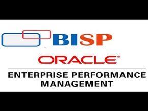 http://www.bispsolutions.com/course/Essbase-ASO-Implementation