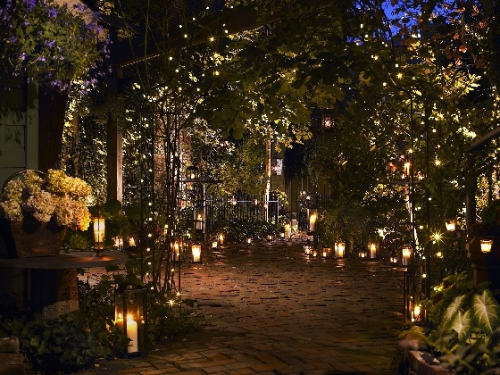 36 best wedding venues pittsburgh images on pinterest wedding gorgeous wedding venue in pittsburgh junglespirit Choice Image