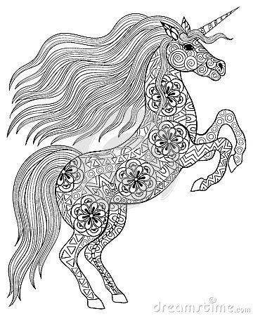 370 best jardim secreto images on Pinterest   Adult coloring ...