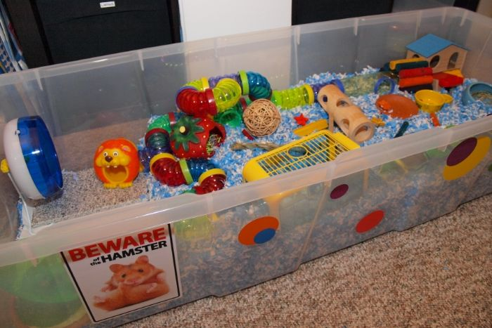 homemade hamster cages | cage type 4 bin cage 5 bedding 5 kaytee clean cozy colored and white 6 ...