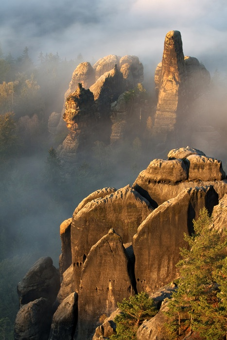 ✯ Sun and Fog on Stone - Oliver Richter  Harz Mountains and Saxon Switzerland✯