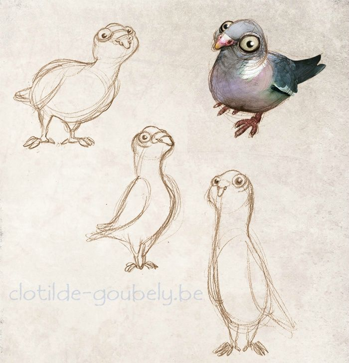 Clotilde Goubely pigeons