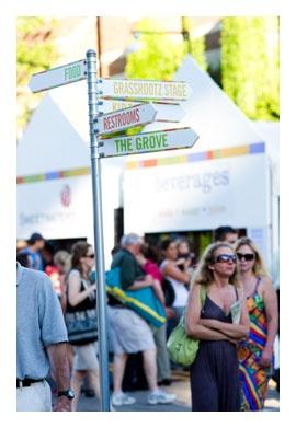 Ann Arbor Summer Festival Rocks!