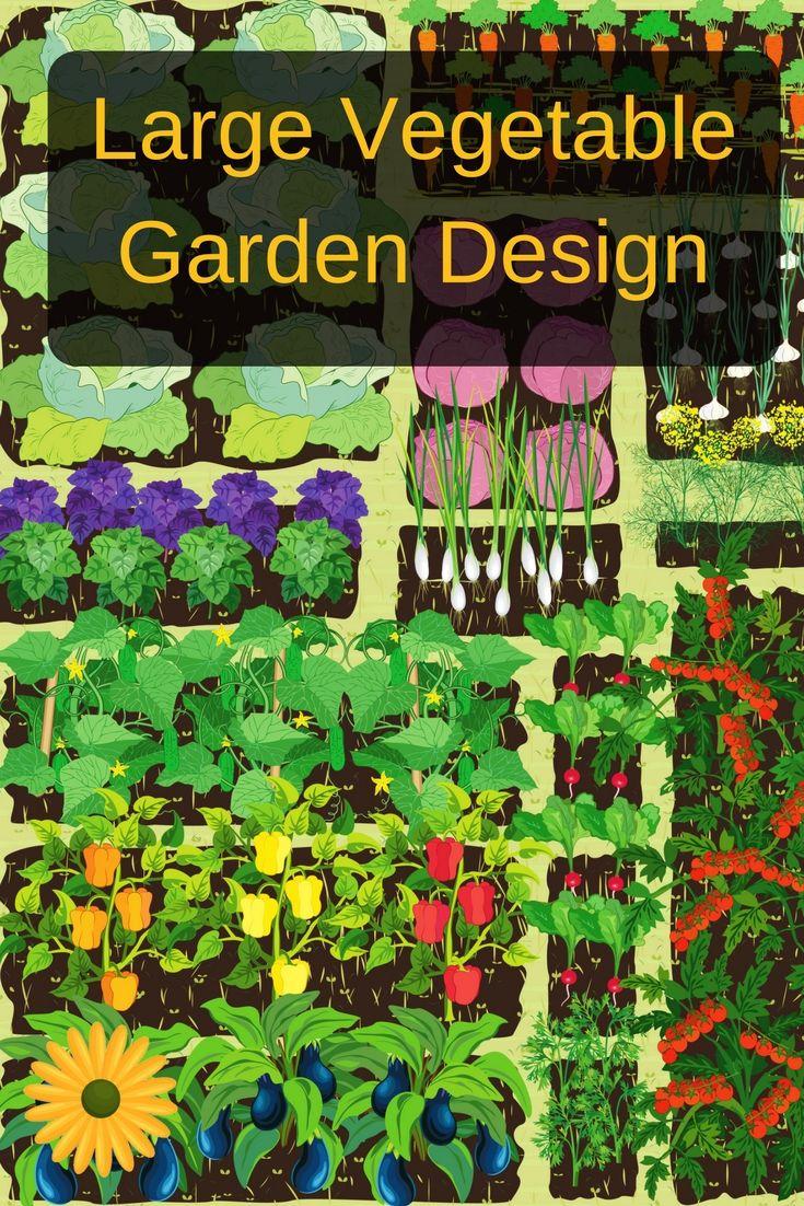 2225 best images about gardening on pinterest gardens for Large vegetable garden