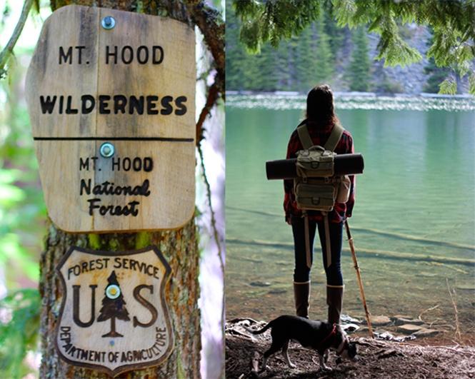 Mt. Hood National Forest: Activities Mt, Camping Fun, Hoods, Girls Travel, Camping Getaway, Forest, Cabins Camping, Camping Activities