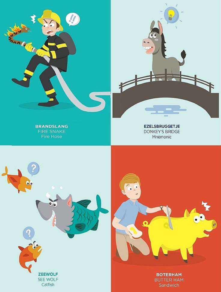 Funny Dutch Words: brandslang, ezelsbruggetje, zeewolf, boterham & http://stuffdutchpeoplelike.com/2016/04/14/15-funny-dutch-words/