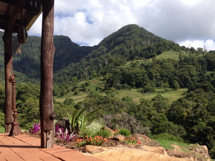 Numinbah valley beauty